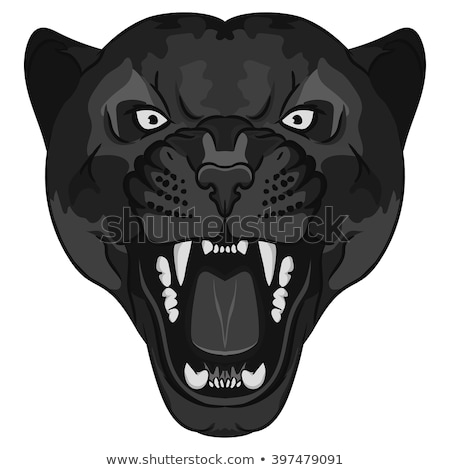 Angry Black Panther Head Baring Fangs Mascot Black and White Stock photo © patrimonio