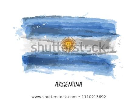 Argentína · zászló · grunge · fa · festett · kopott - stock fotó © hypnocreative