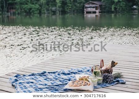 Picknick meer moeder dochter grootmoeder familie Stockfoto © JamiRae