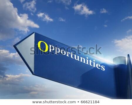 business concept we are hiring roadsign stock photo © tashatuvango