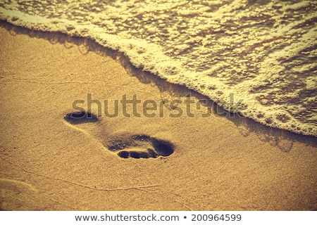 footprints on sand beach - vintage retro style Stock photo © Mikko