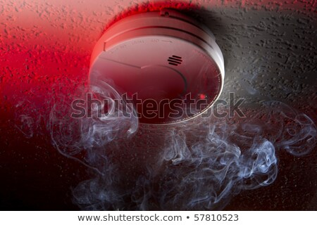Home Smoke Detector mounted on Ceiling  Stock photo © tab62