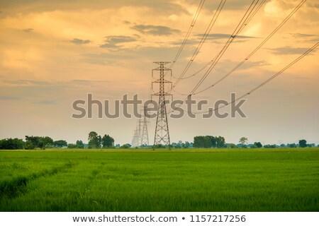 mooie · landschap · elektrische · toren · blauwe · hemel · wolken - stockfoto © meinzahn