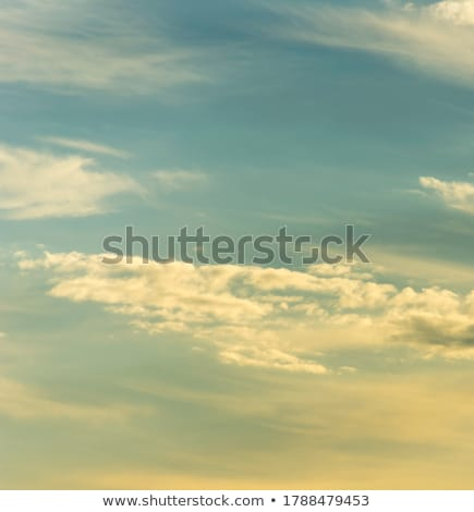 landscape with acres,trees and dark clouds Stock photo © meinzahn