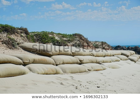 тропические · пляж · шаги · воды · зеленый · небе - Сток-фото © aspenrock