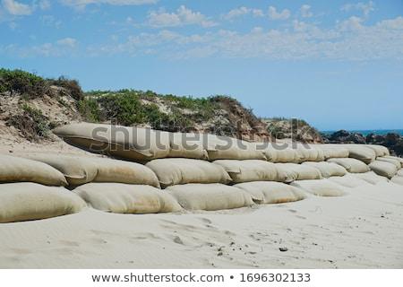 tropicales · playa · pasos · agua · verde · cielo - foto stock © aspenrock