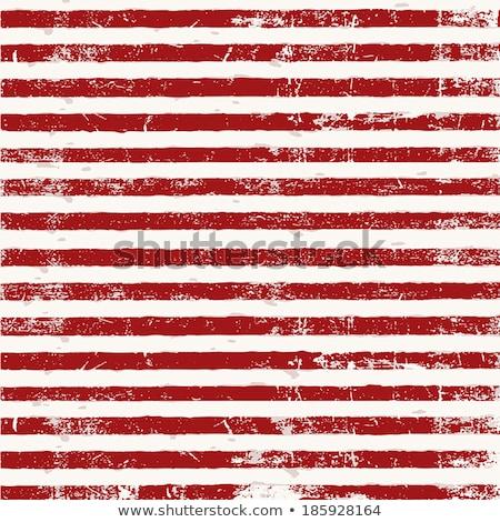 Grunge Striped Background  Stock photo © olgaaltunina
