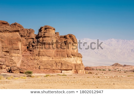 desert landscape in israels negev desert stock photo © zhukow