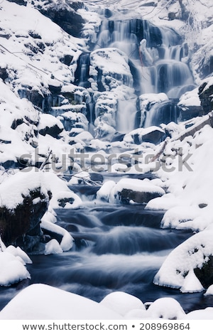 waterfall in the carpathian mountains stock photo © oleksandro