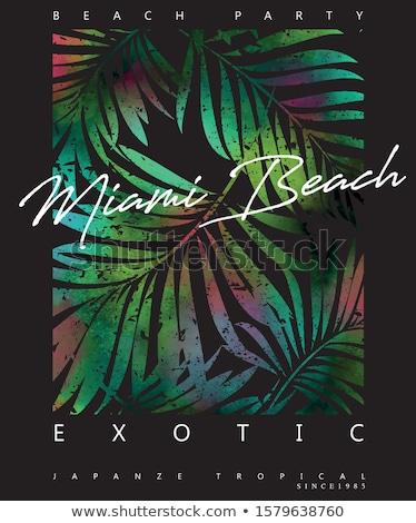 Miami plaj metin ağır karikatür ad Stok fotoğraf © blamb