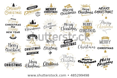 Happy New 2017 Year and Merry Christmas greeting card, vector illustration Stock photo © carodi