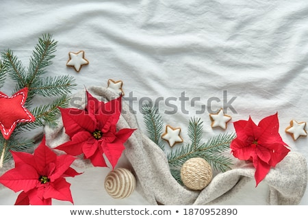 Christmas cake on plate on red fabric on wood background and dec Stock photo © dfrsce