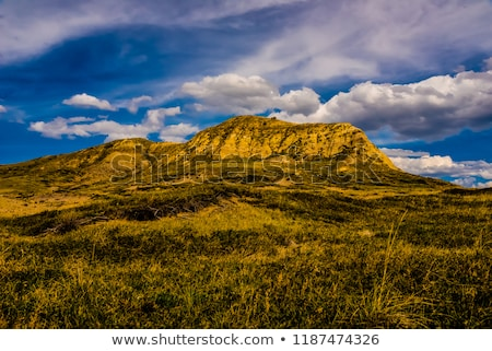 Grasslands National Park of Canada  Stock photo © benkrut