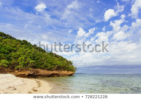 Strand koraal kust Fiji zomer mooie Stockfoto © stephkindermann