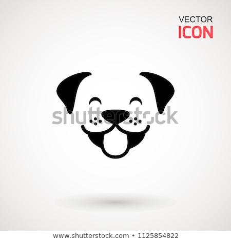 Pets Cat and Dog Faces Icon Stock photo © Krisdog