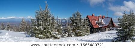 Lengyelország hegy építészet lépcsősor Európa út Stock fotó © oxygen64