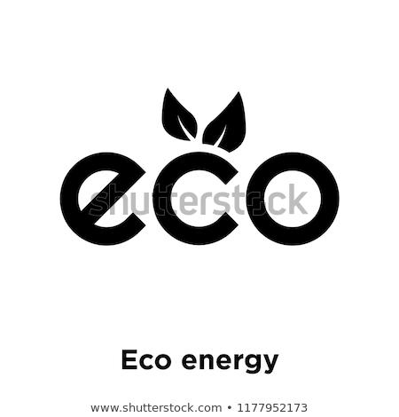 Eco logo simbolo trasparente gradiente Foto d'archivio © adamson