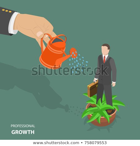 professional growth flat isometric low poly vector concept stock photo © tarikvision