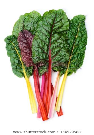 plantaardige · tuin · volwassen · voedsel · blad · groene - stockfoto © sarahdoow