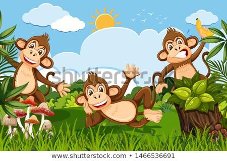 Dzsungel jelenet illusztráció fa boldog erdő Stock fotó © bluering