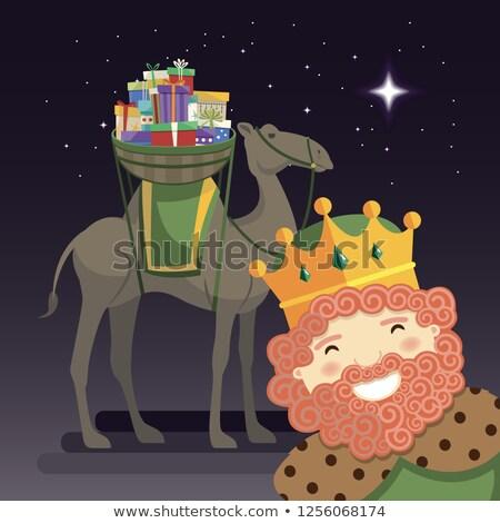 Três reis rei camelo presentes noite sorrir Foto stock © Imaagio