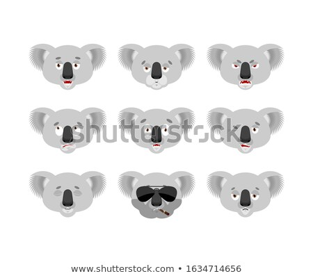 Angry Koala Head Mascot Stock photo © patrimonio