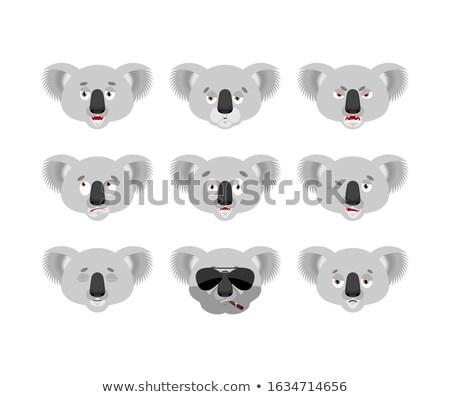 angry koala head mascot stock photo © patrimonio