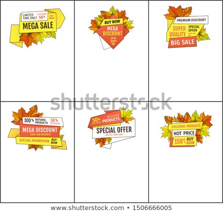 Set of Mega Sale Autumn Fall Price Off Coupons Stock photo © robuart