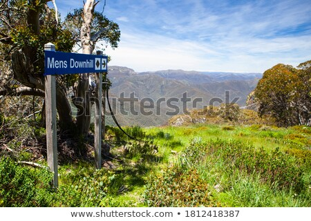 Bushwalker on summit of mountain with valley views Stock photo © lovleah