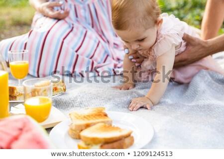 родителей ребенка дочь пикника парка Сток-фото © deandrobot