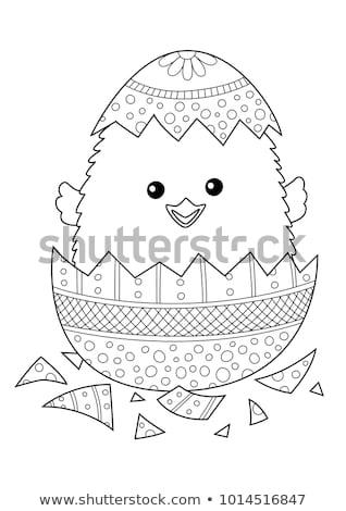 Kleurrijk Pasen kuikens weinig vrolijk decoratie Stockfoto © BarbaraNeveu