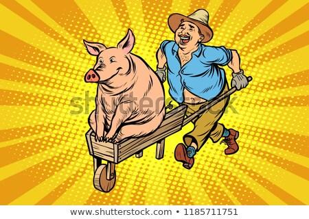 A farmer is transporting a pig on a wooden wheelbarrow Stock photo © rogistok