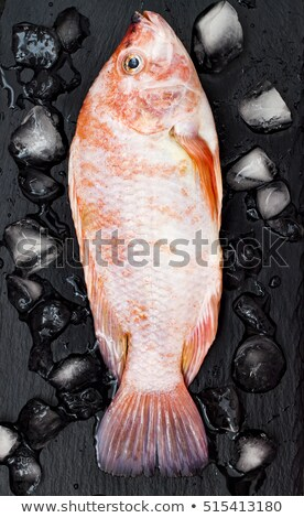 Seafood Restaurant Menu with Delicious Fesh Fish Stock photo © robuart