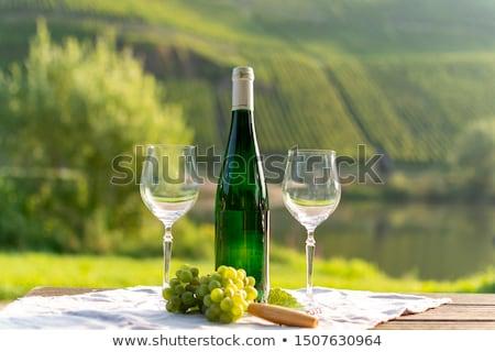 Vadi bir güzel Almanya manzara Stok fotoğraf © borisb17