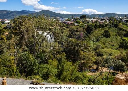 Beautiful Camly waterfall In Da Lat city Stock photo © galitskaya