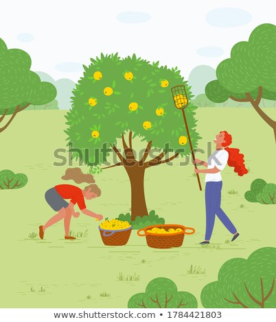 Woman with Basket and Gathered Greenery Vector Stock photo © robuart
