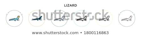 Kettő monokróm rajzolt fekete körvonal fehér Stock fotó © blackmoon979