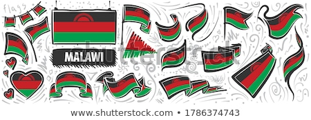 Vector set of the national flag of Malawi in various creative designs Stock photo © butenkow
