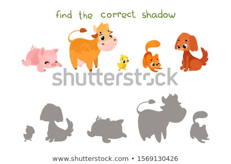 Shadow matching educational game for children. Cartoon chicken Stock photo © natali_brill