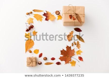 шкатулке природы сезон оберточной бумаги осень Сток-фото © dolgachov