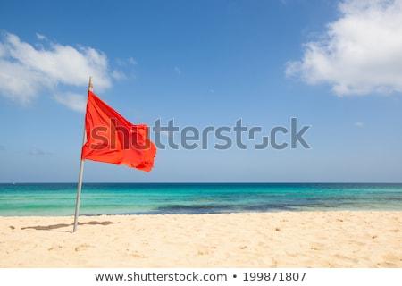 red flag on beach stock photo © smithore