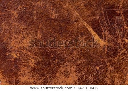 Distressed leather texture Stock photo © Balefire9