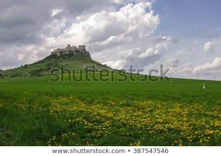 castelo · Eslováquia · arquitetura · história · ruínas · ao · ar · livre - foto stock © phbcz