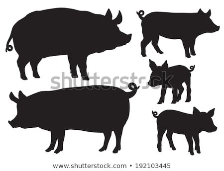 pigs silhouettes set stock photo © kaludov