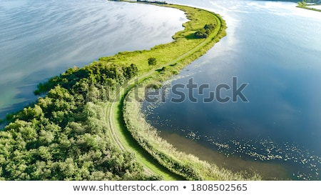 Doğa Hollanda ağaçlar yeşil bitkiler Hollanda Stok fotoğraf © compuinfoto