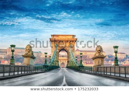 Buda Castle and Chain Bridge. Budapest, Hungary Stock photo © photocreo