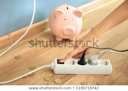 Electrician with a piggy bank Stock photo © photography33