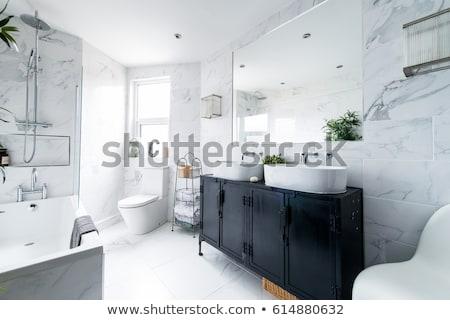 Verde bagno interior design home interni moderno Foto d'archivio © NiroDesign