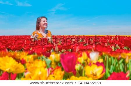 Little girl cheiro tulipa flor primavera cena Foto stock © goce
