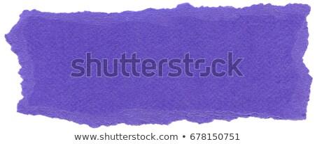 Fiber Paper Texture - Lavender stock photo © eldadcarin